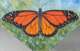 Monarch painting by Sue Graham