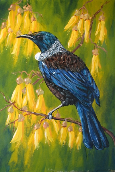 Tui In Kowhai painting by Sue Graham