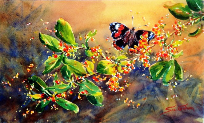 Coprosma Berries and Red Admiral Butterfly by Sue Graham