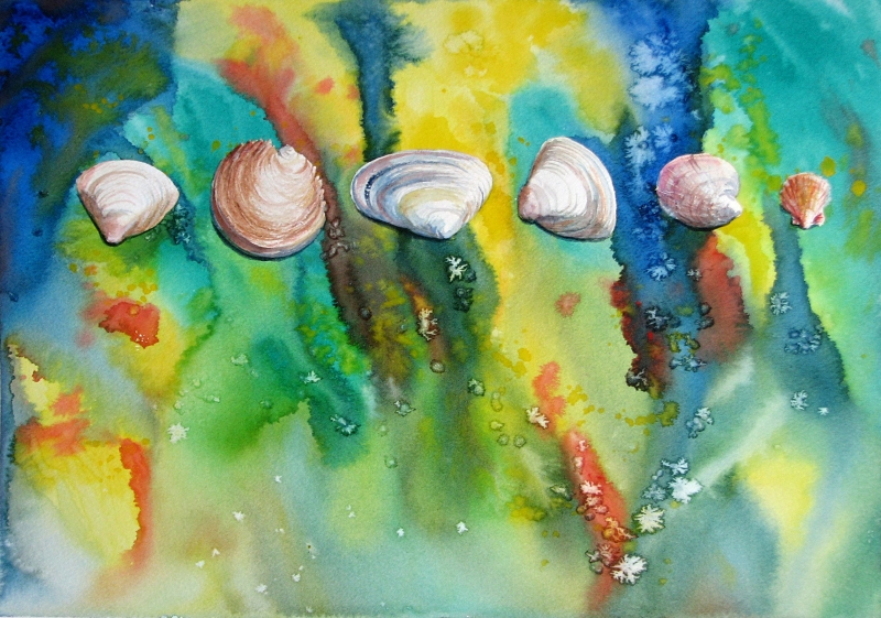 Pearly Shells II painting by Sue Graham