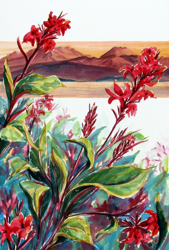 Cannas at the Lake by Sue Graham
