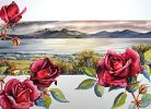Roses on the hill by Sue Graham